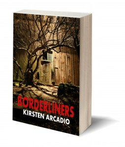 Borderliners 3d book cover